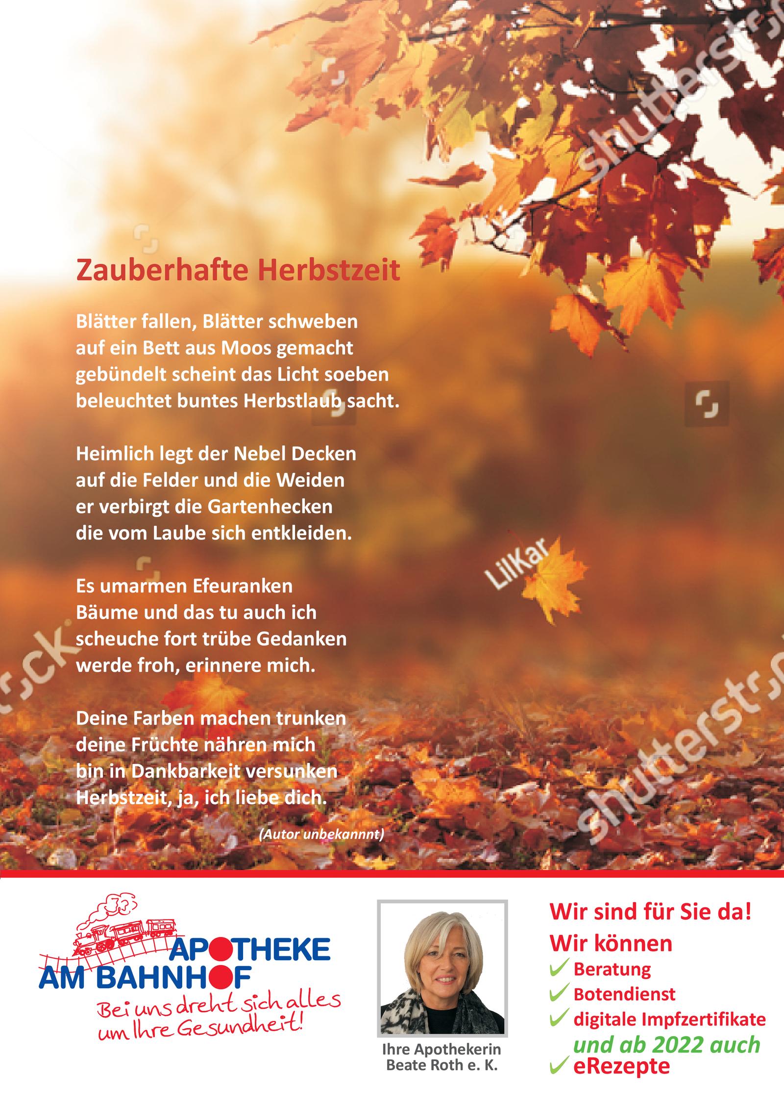https://mein-uploads.apocdn.net/12415/leaflets/12415_flyer-Seite2.png
