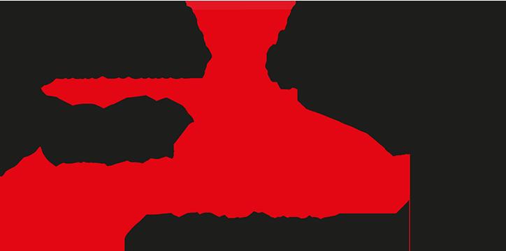 Logo der Stadt-Apotheke Offenburg
