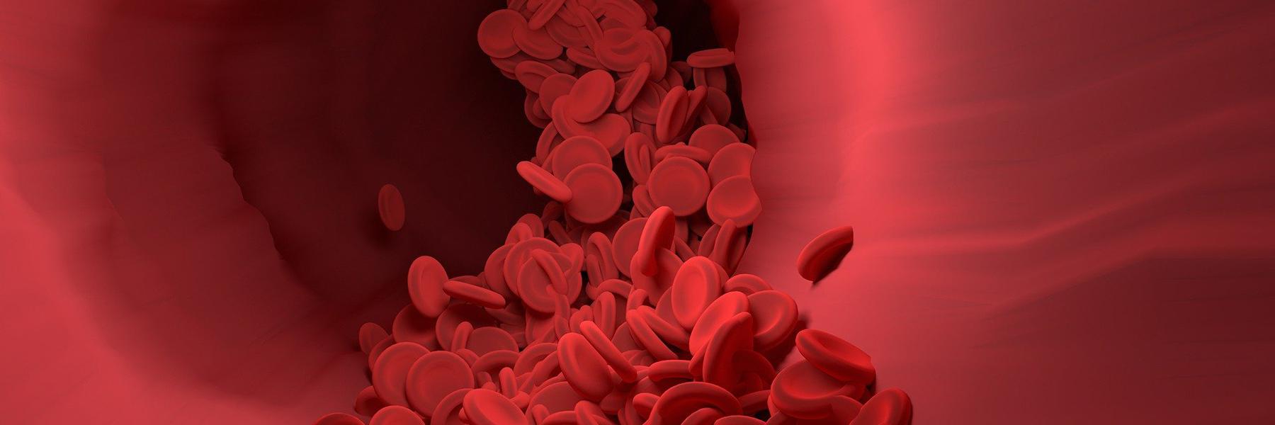 Hämophilie und Von-Willebrand-Syndrom