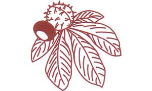 Logo der Kastanien-Apotheke