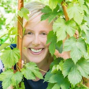 Hopfen –Heilpflanze des Monats Oktober 2019 der Bahnhof-Apotheke Bremervörde