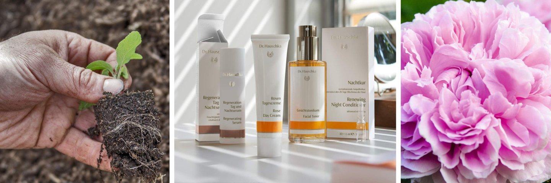 Premium-Naturkosmetik von Dr. Hauschka